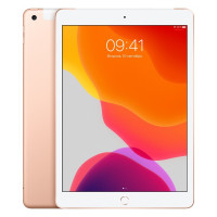 iPad 7 Wi-Fi + Cellular 128GB - Gold