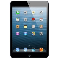 iPad mini Wi-Fi + Cellular 64GB - Black & Slate